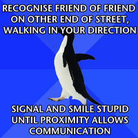 Socially_awkward_penguin