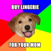 Lingeriedog