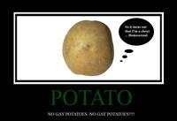 No_gay_potatoes