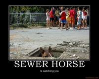 Sewer Horse/Basement Horse