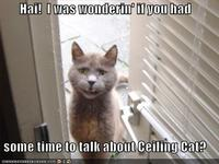 Funny-pictures-cat-door-talk-ceiling-cat