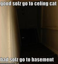Basement Cat