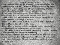 Chuck Norris Facts