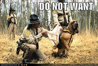 Do_not_want_dog