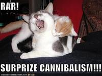 Lolcats-funny-pictures-surprise-cannibalism