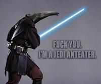 Jedi-anteater