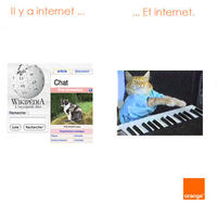 Orange Meme