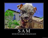 Sam the World's Ugliest Dog