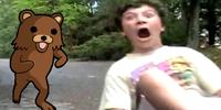 Stare_kid_bear