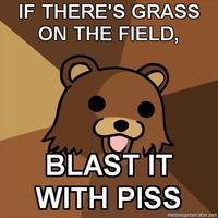 Blast It With Piss!