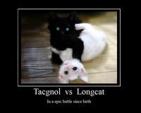 Longcat_tacgnol