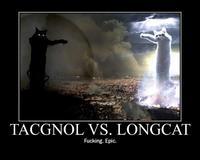 Longcattacgnol