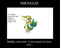 Smugleaf / Snivy