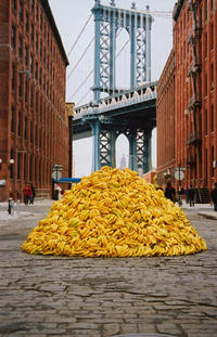 Suddenly, Bananas! Thousands Of Them!