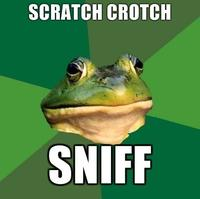 Foul Bachelor Frog