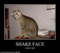 Shake Face