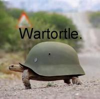 WARTORTLE.jpg
