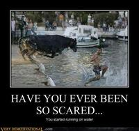 Demotivational-posters-have-you-ever-been-so-scared1