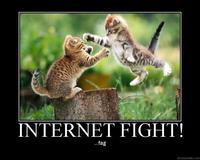 Internet Fight