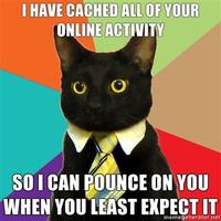 I-have-cached-all-of-your-online-activity-so-i-can-pounce-on-you-when-you-least-expect-it