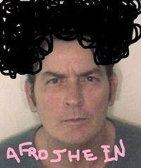 Charlie Sheen Rant / #tigerblood