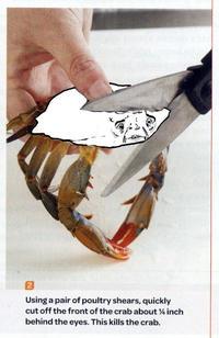 Sad Crab / This Kills The Crab