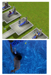 Sims33.png