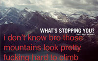 Funny-hipster-edit-mountain_large