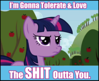 Pony Haters