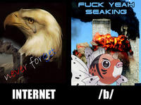 The Internet vs. 4chan