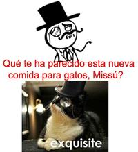 Feel Like a Sir