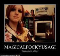 You're not Japanese (MagicalPockyUsagi)