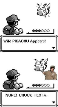 A Wild X Appears! / Wild X Appeared!