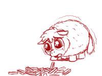 Fluffy Ponies