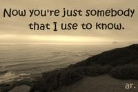 """""""Somebody That I Used To Know"""""""