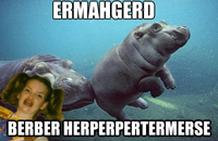 Ermahgerd