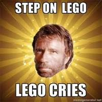 I Hope You Step on a LEGO