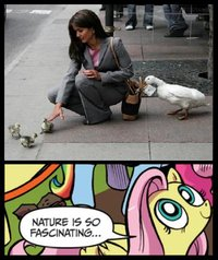 Nature is so Fascinating