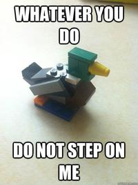 Actual Advice Mallard