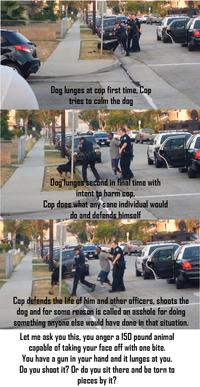Hawthorne Dog Police Shooting