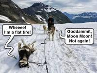 Moon Moon