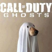 Call of Duty Dog
