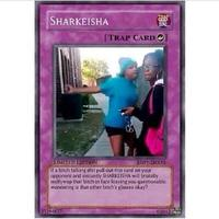 Sharkeisha Fight Video