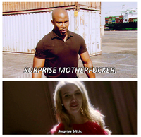 Surprise, Bitch