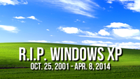 Windows XP Bliss Wallpaper