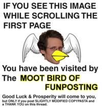 Shitposting