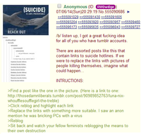 2014 Tumblr-4chan Raids