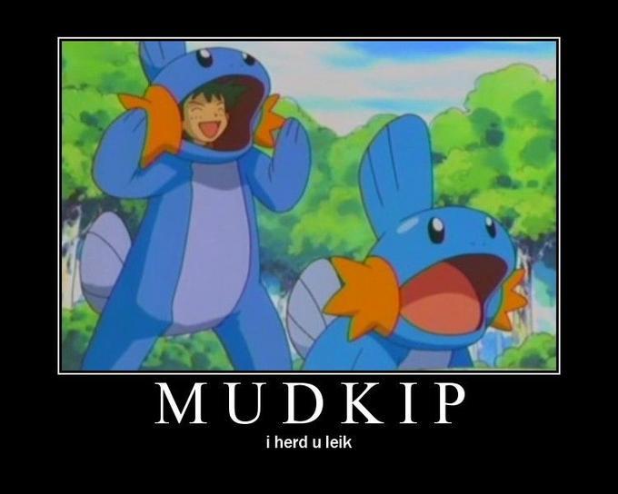 mudkips-herd.jpg