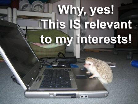 Relevant_to_interests_hedgehog.jpg