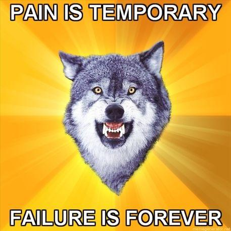 Courage-Wolf-Pain-is-temporary-Failure-is-forever.jpg